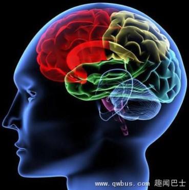 流言揭秘:人22岁时智力就到极限了?