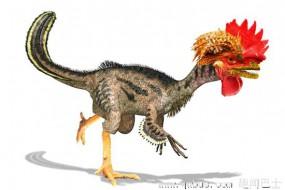 把鸡变回恐龙:胚胎改造遗传密码开启50%