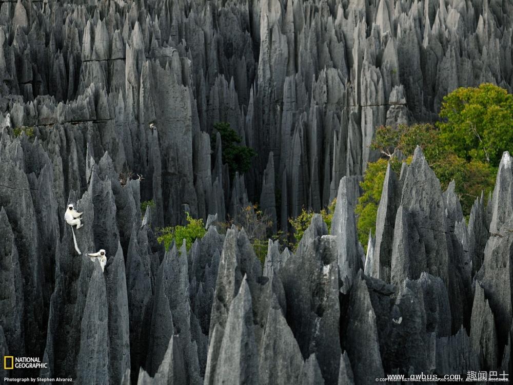 马达加斯加石林