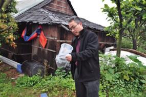 蚊界无间道:五十万雄蚊的绝育使命