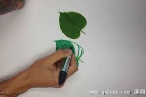 纸上画3D树叶以假乱真