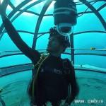 海底农场花园很科幻