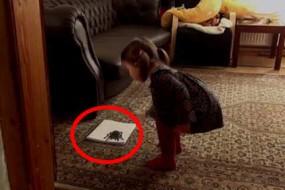 二货老爸画大蜘蛛吓唬女儿,结果,意想不到的事发生了
