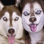 美女化妆成哈士奇 连真狗都看傻眼了