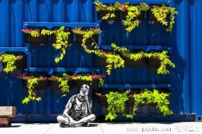 艺术家在身体作画 使自己巧妙融入街景