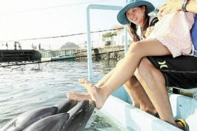 聪明海豚能为游人做足疗