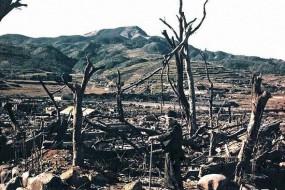 美国遭遇核爆后恐怖场景