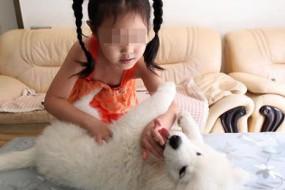 5岁女孩用神奇手法催眠动物