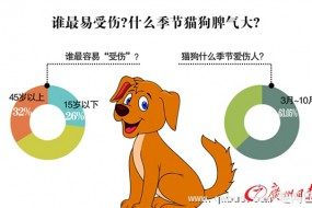 狂犬病死亡数位列第三:人类唯一100%致死传染病