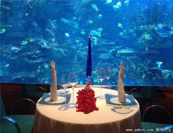 壁纸 海底 海底世界 海洋馆 水族馆 桌面 600_461