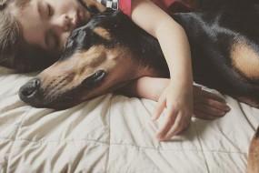 4岁女孩与爱犬形影不离