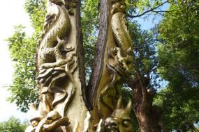 宁波惊现活体树雕 生长树木被雕刻刷漆