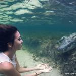 美女模特与鳄鱼戏水