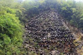 湖北神农架现奇景 峭壁挂满木箱