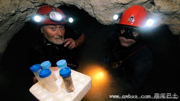 然而,如此恶劣的环境,竟然是许多怪异生物的幸福家园。科学家们惊奇地发现,莫维勒洞穴竟然生活着48种动物,其中33种是世界其它地方所没有的。图为罗马尼亚科学家克里
