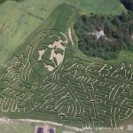 美夫妇玉米田里建巨幅军人肖像迷宫