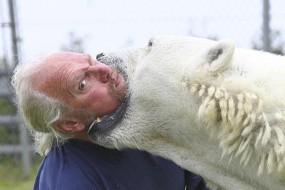 美国训熊师养13头熊当宠物