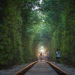 爱情隧道太浪漫 女孩拍照阻停火车