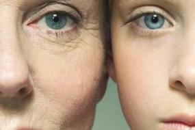 删除衰老基因或可多活四五十年