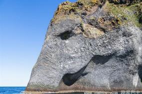冰岛岩壁似大象喝水 有鼻子有眼