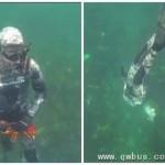 惊恐!澳捕鱼者被5米长白鲨瞬间生吞