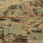 UFO爱好者发现火星蝎子 坚信火星有生命