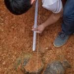长沙7号古墓里挖出钵子菜烧锅 造型圆润