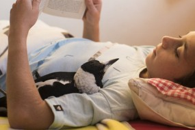 小喜鹊成了他们的家庭成员 陪人玩儿还帮孩子剔牙