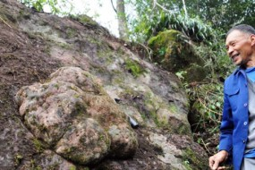 四川发现巨型恐龙足迹:大如脸盆