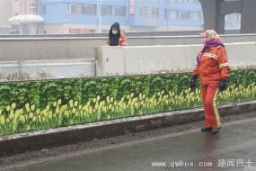 冰雪严冬长春绿化带惊现茂盛鲜花绿叶:细看是仿真的