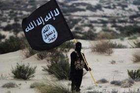 """黑客组织""""匿名者""""揭秘恐怖组织IS技术支持团队"""