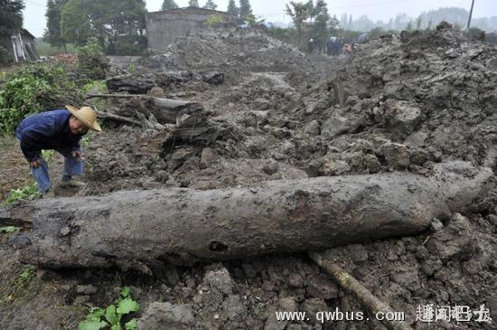 村民挖到20米巨型千年乌木:被严加看管-趣闻巴士