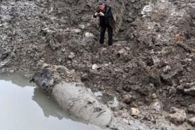 村民挖到疑似巨型千年乌木 当地严加看管
