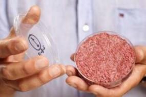 科学家:人造肉口味媲美真肉