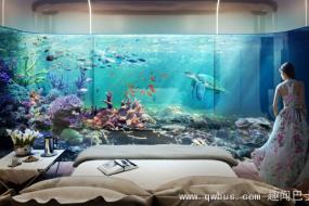 迪拜开卖豪华海马别墅 水下卧室可观珊瑚