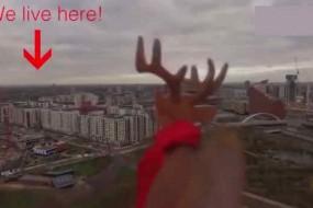 天上飞来一只驯鹿为圣诞老人指路