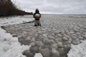 美国湖中惊现罕见景象:大量冰球浮动