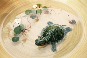 艺术家作3D树脂画太逼真被误会虐待动物