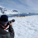 南极游成春节旅游出境游新热点