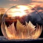 冰冻肥皂泡 结冰过程梦幻唯美如魔法水晶球