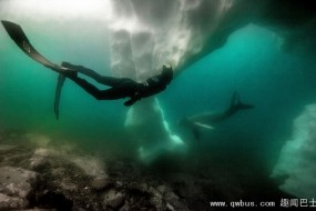 南极-2摄氏度冰潜挑战人体极限
