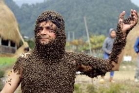 尼泊尔奇人能裸身爬满毒蜂