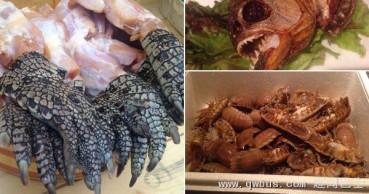 烧鳄鱼爪炸蝾螈蟑螂拼盘 日餐厅开发古怪食材
