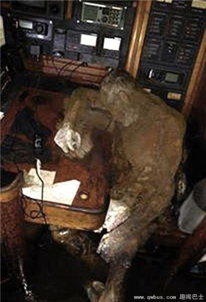 专家指,巴若拉特的死亡相信来得十分突然。