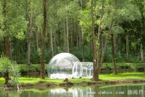 网友发明透明充气泡泡帐篷 防水防火