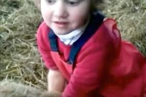 英国3岁女孩熟练为绵羊接生