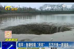 广西鱼塘惊现天坑 5万斤鱼不翼而飞