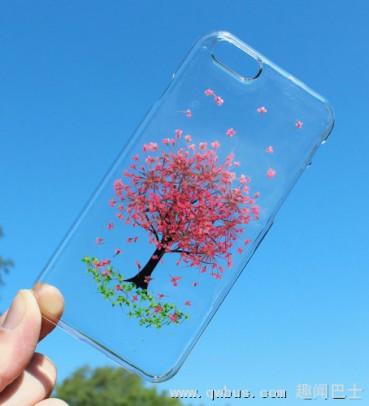 创意十足真花压制透明手机壳