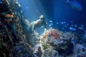 """新型潜水服可屏蔽电磁让人在海中""""隐身"""""""