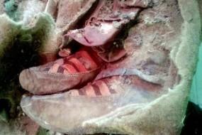 千年木乃伊竟穿阿迪达斯鞋 真有穿越这回事?